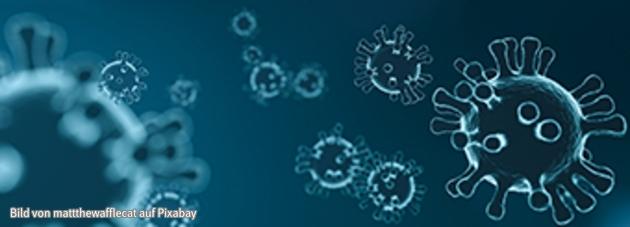 Darstellung von Viren