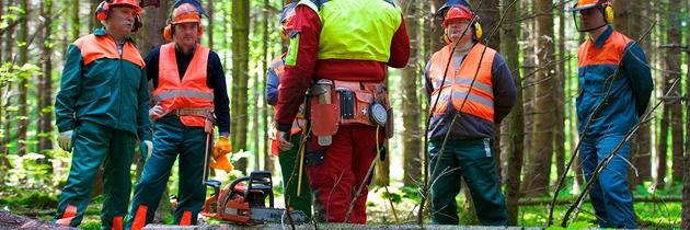 Man sieht Waldarbeiter in einem Halbkreis um ihren Vorgesetzten, der sie zur Nutzung der Kettensäge unterweist